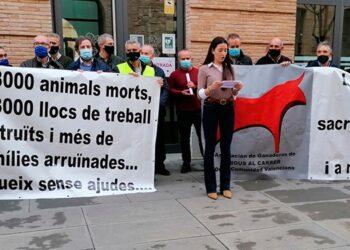 Manifestación de ganaderos de bravo, Valencia, pancartas, lectura manifiesto