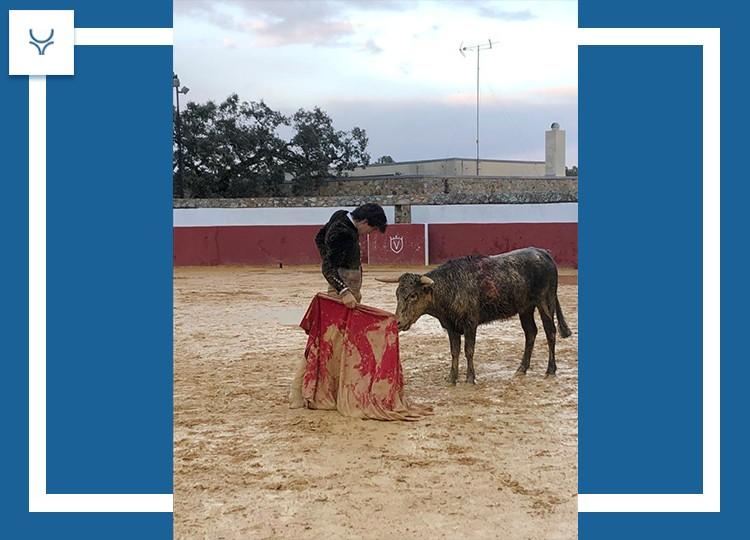 Manuel Perera, raza y toreo del bueno entre el lodazal