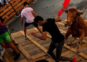 Festejos Populares, Bous al carrer, toro en la calle