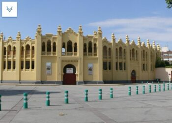 La afición de Albacete exige al Ayuntamiento un 'Pliego' cuanto antes
