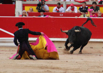 Encuesta: ¿Se deberían celebrar corridas de toros en Pamplona aunque se suspendan los encierros?