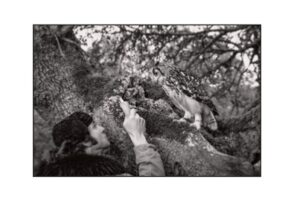 Morante, observador y vigía de la Naturaleza