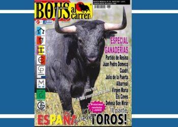 Bous al Carrer, revista, portada, Partido de Resina