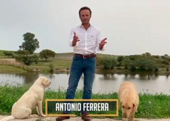 Antonio Ferrera, 'La hora del toreo', Sevilla, Feria de Abril, Pagés