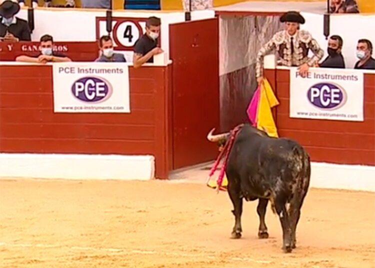 'Alambrisco', El Pilar, Tobarra, Albacete, Uceda Leal, Joaquín Galdós, Diego Carretero