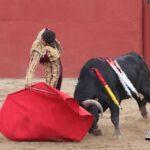 El toreo de Nacho Torrejón vuelve a destacar en Sonseca