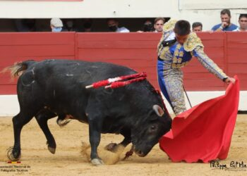 José Cabrera dos vueltas al ruedo en Vic