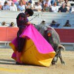 Morante de la Puebla cuaja a la verónica al segundo (Directo: Arles)